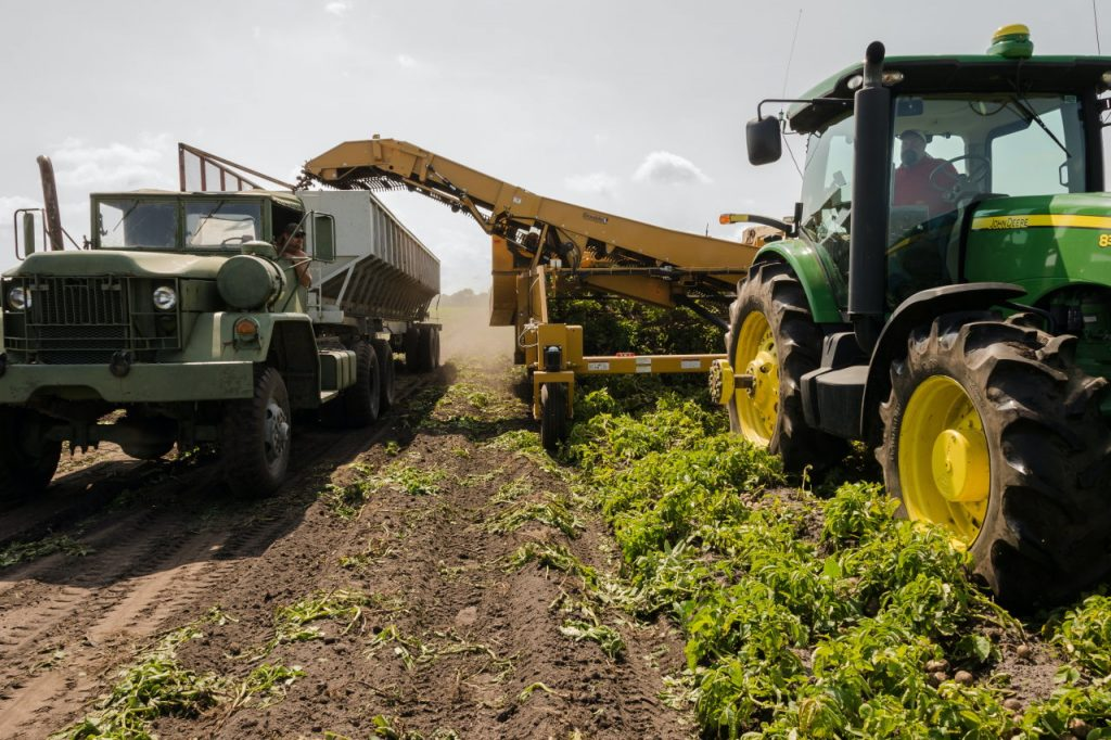 korekcja rolnictwa